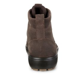 450114-55778-heel